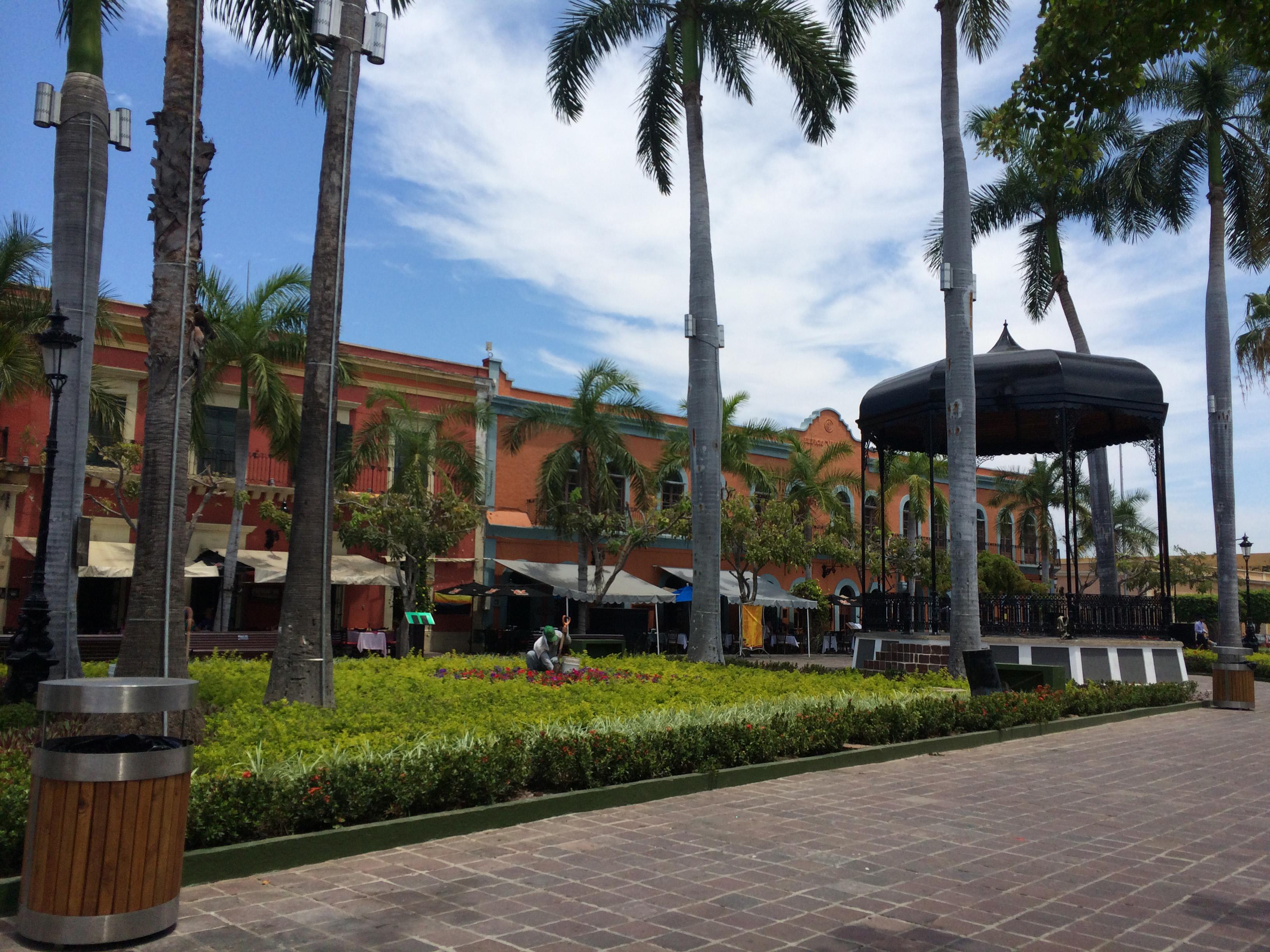 Maz Machado square