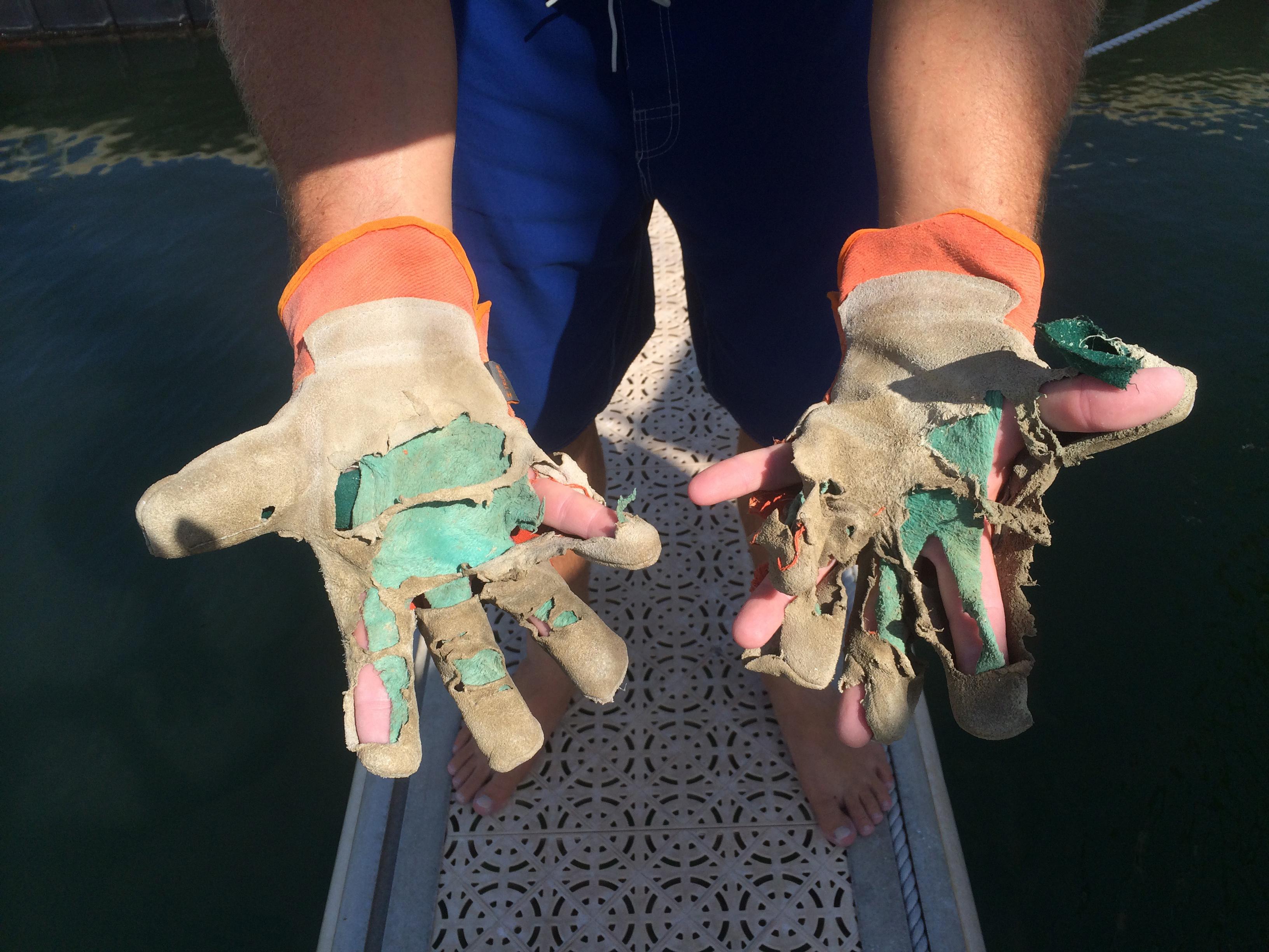 Jonny gloves