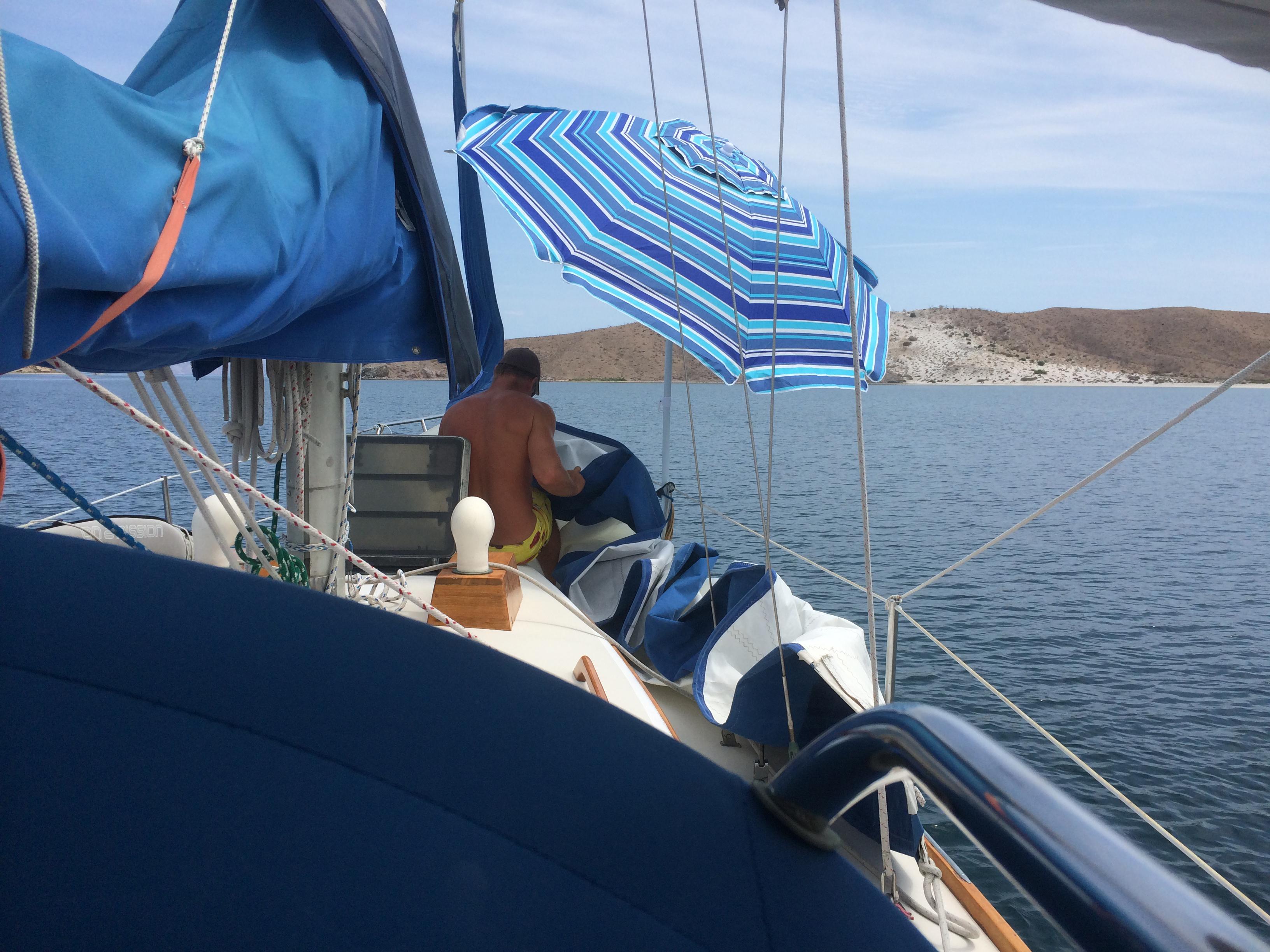 Alca sail repair