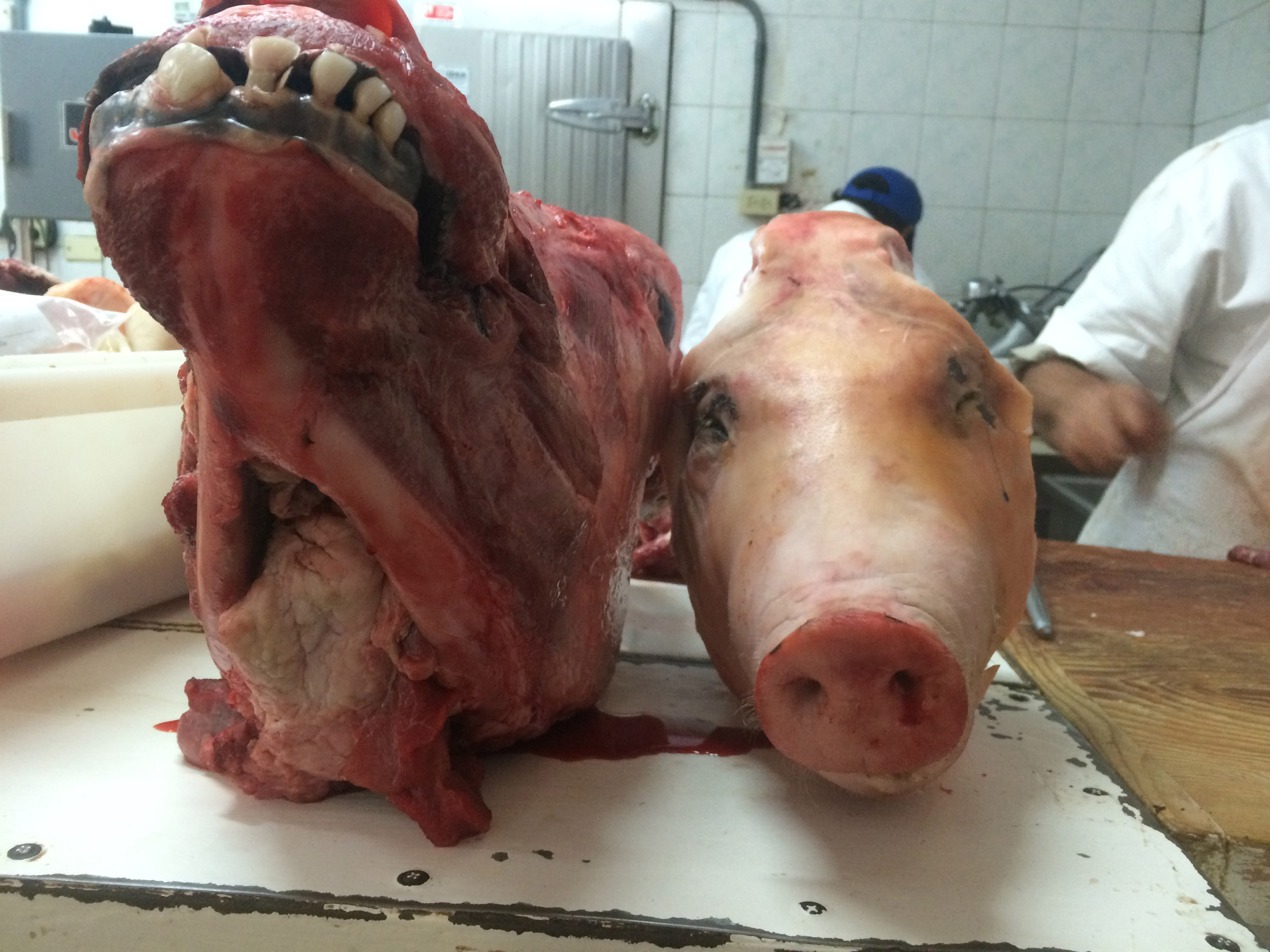 Butcherheads